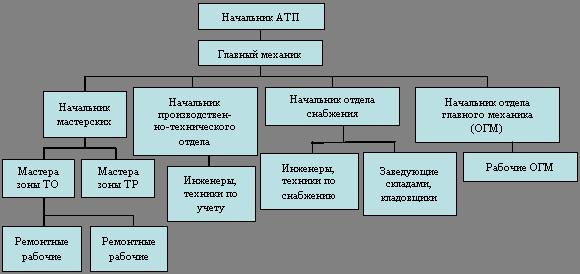 Структурная схема организации
